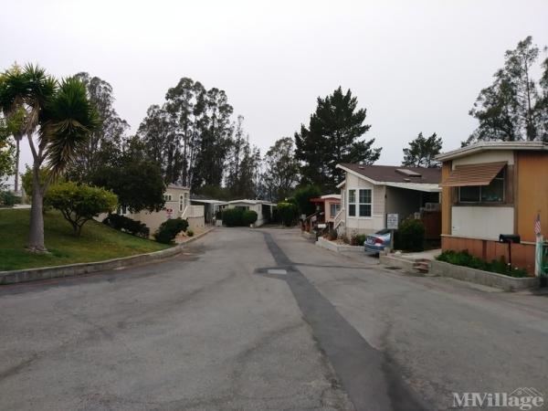 Photo of Summerhill Mobile Home Park, Salinas, CA