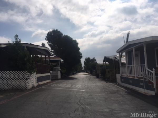 Photo of Tahitian MHP, Sylmar, CA