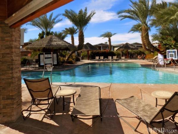 Photo of The Palms River Resort, Needles, CA