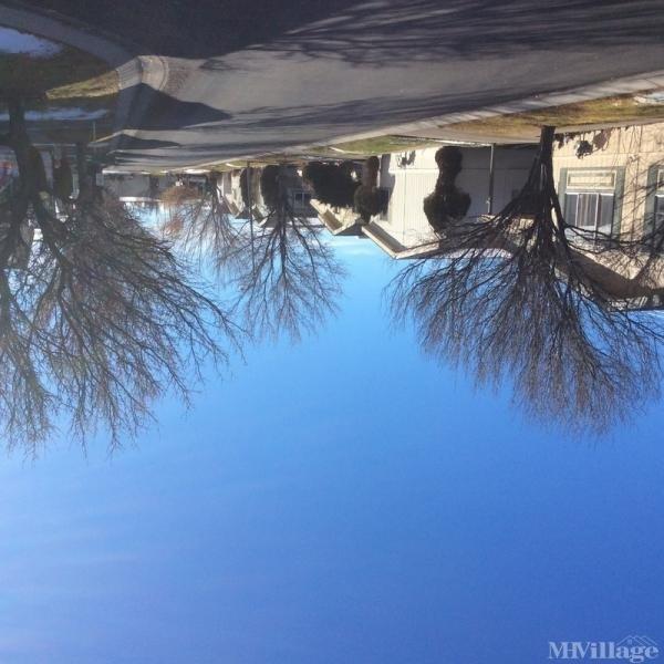 Photo of Parc De Maison, Carson City, NV