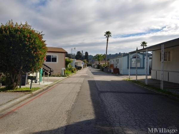 Photo of Carriage Acres MHP, Soquel, CA