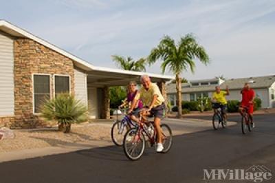 Briarwood 55+ Resort Community