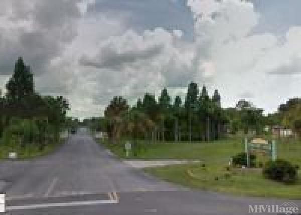 Palm Tree Acres Mobile Home Park Mobile Home Park in Zephyrhills, FL