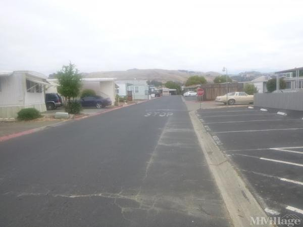 Photo of Continental MHP, Hayward, CA