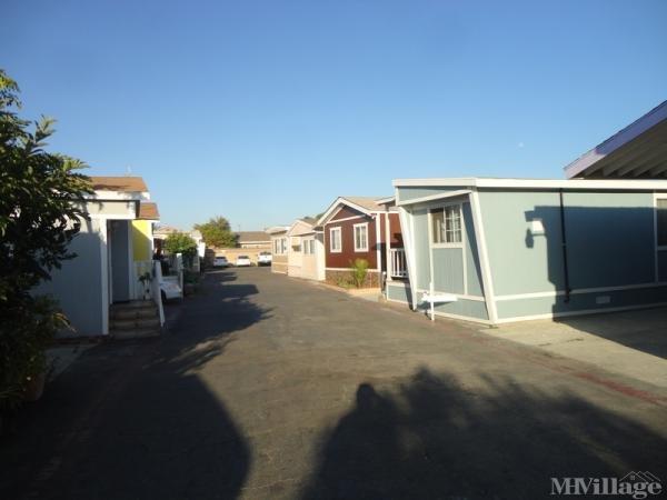Photo of Paradise Trailer Lodge, Carson, CA