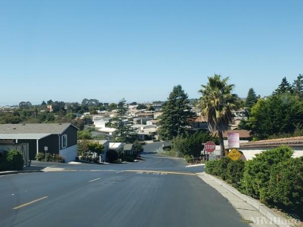 Photo of Portola Heights, Watsonville, CA