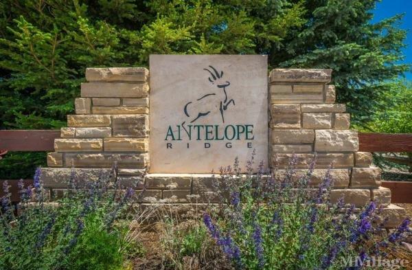 Antelope Ridge Mobile Home Park in Colorado Springs, CO