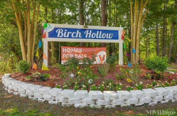 Photo of Birch Hollow, Goose Creek, SC