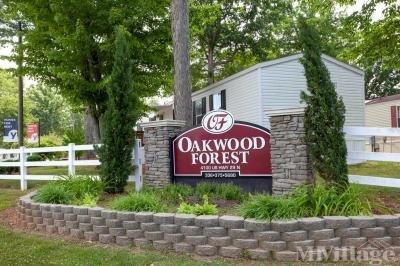 Oakwood Forest