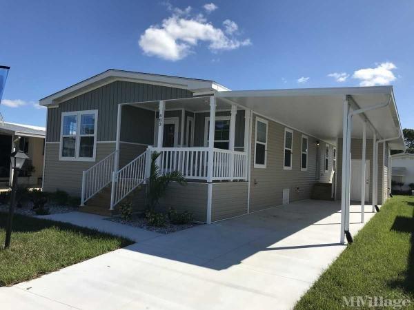 Brand New Homes