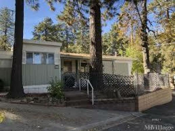Photo of Coulter Pine Trailer Park, Idyllwild, CA