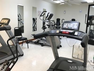 Excerise Room-Gym