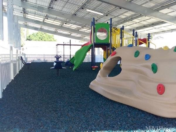 Playground with shade cover