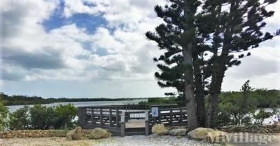 Community Fish and View Deck