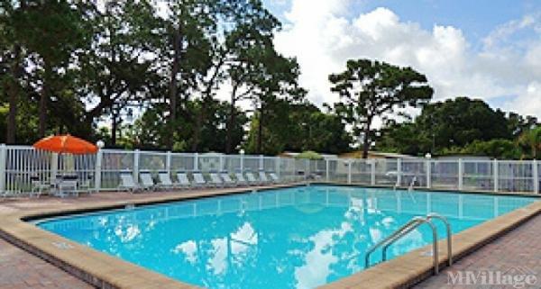 Photo of Whispering Pines Largo, Largo, FL