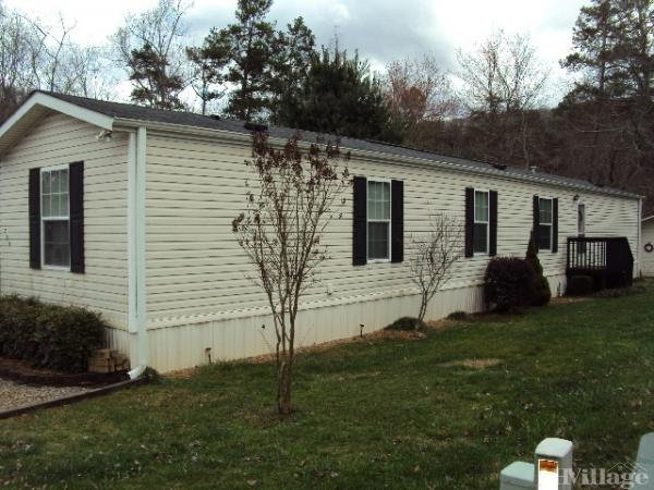 Photo of Case Cove Acres, Candler, NC