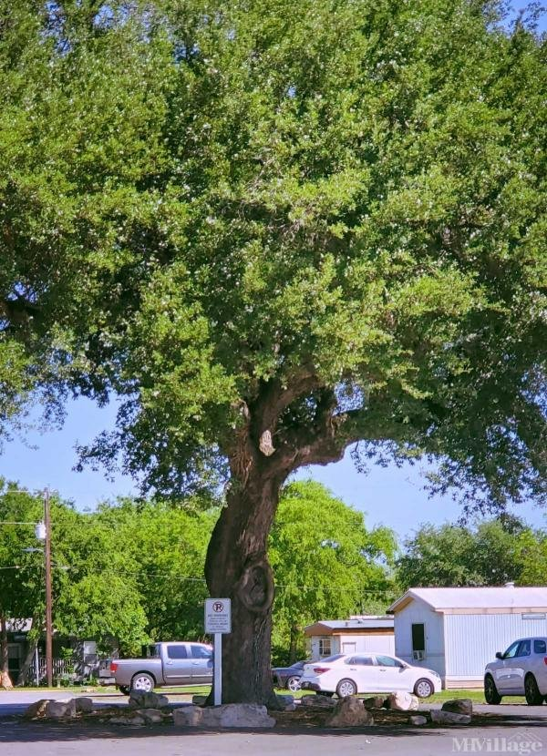 Photo of Country Way Village Mobile Home Park, New Braunfels, TX