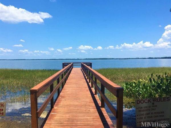 Photo of Lake Shore, Leesburg, FL