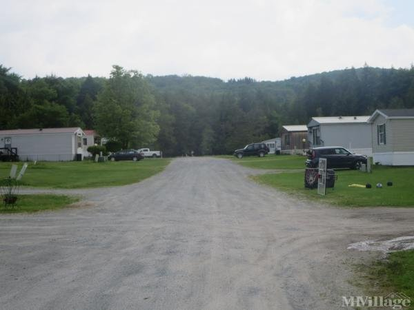 Photo 0 of 2 of park located at Gabriel Rd Livingston Manor, NY 12758
