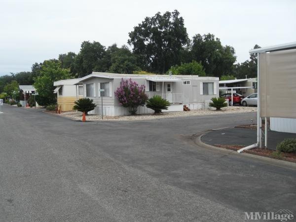Photo 0 of 2 of park located at 982 East Lassen Avenue Chico, CA 95973