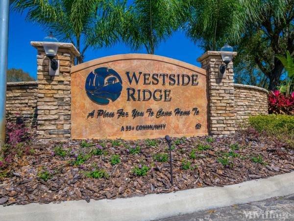 Photo of Westside Ridge, Auburndale, FL