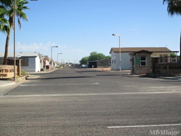 Photo of Cotton Lane Resort, Goodyear, AZ