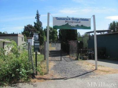 Tamarack Ridge Estates