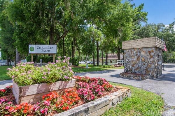 Photo of Clover Leaf Farms, Brooksville, FL