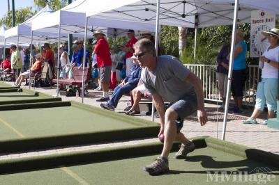 Large Bocce ball complex