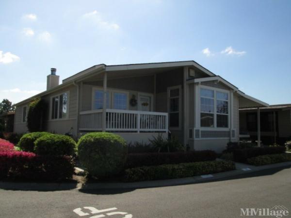 Photo of Millpond Mobile HomePark, San Jose, CA