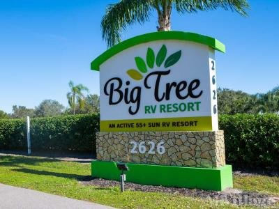 Big Tree RV Resort