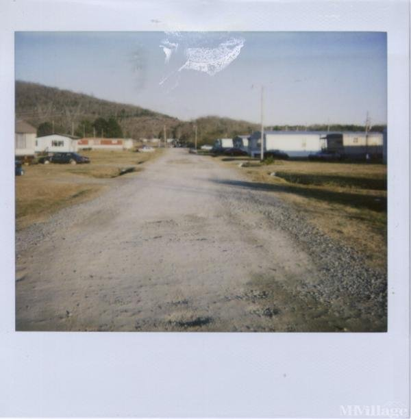 Wright's Mobile Home Park Mobile Home Park in Hollywood, AL