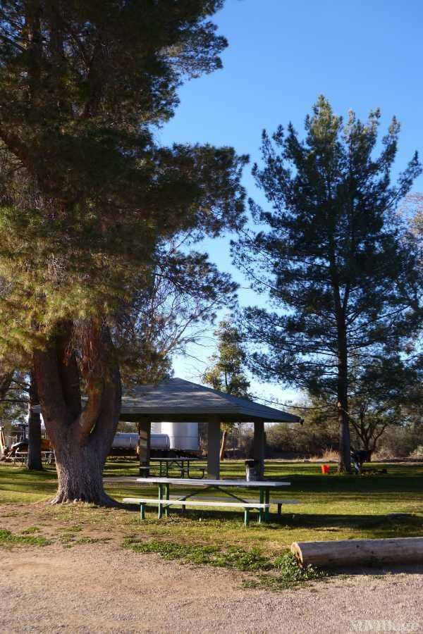 Photo of Los Arboles Community, Sahuarita, AZ