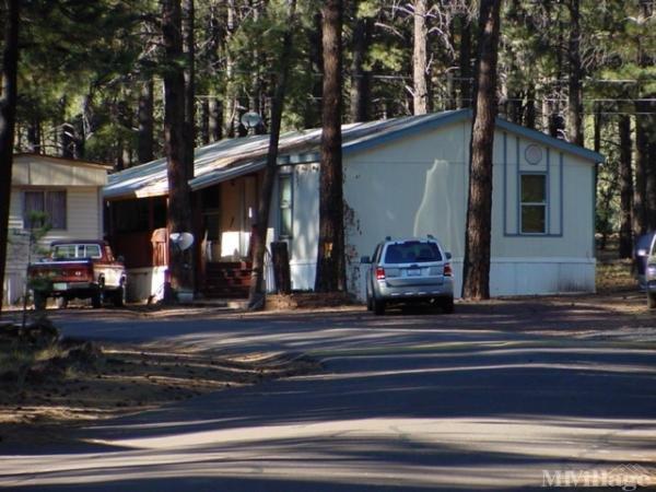 Photo of Hidden Hollow Mobile Home Park, Flagstaff, AZ