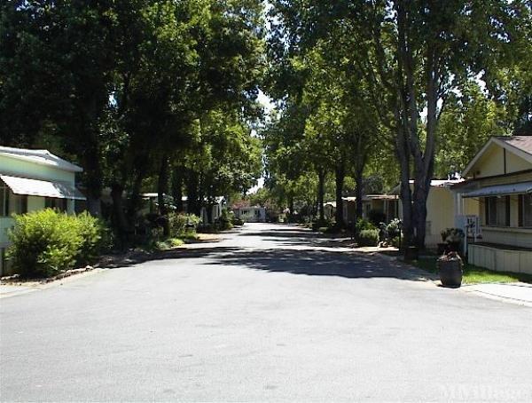 Photo 0 of 2 of park located at 567 East Lassen Avenue Chico, CA 95973