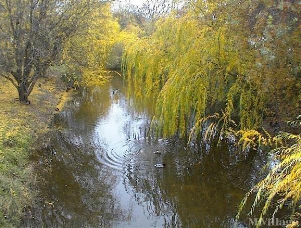 Photo of Cedarwood Mobile Home Park, Sacramento, CA