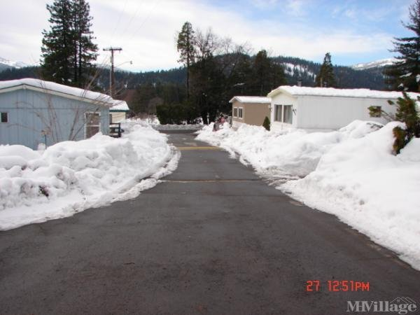 Photo of Chateau Shasta Mobile Home & Rv Park, Mount Shasta, CA