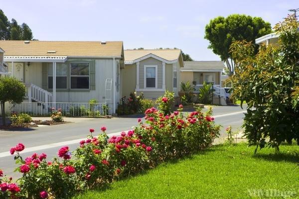 Photo of The Colony, Oxnard, CA