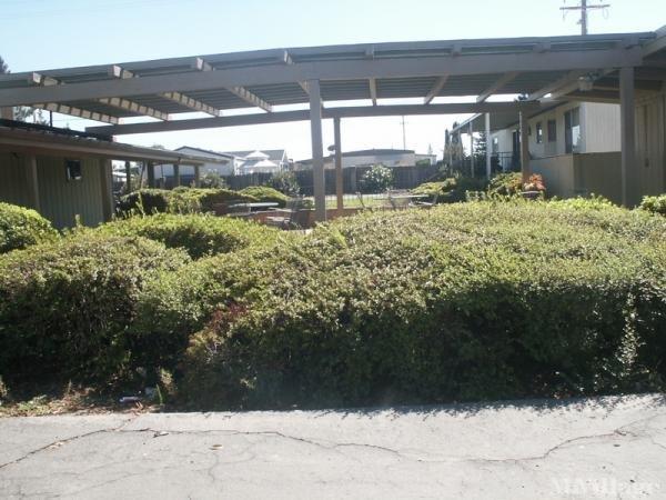 Photo of Country Villa Mobile Home Park, Galt, CA