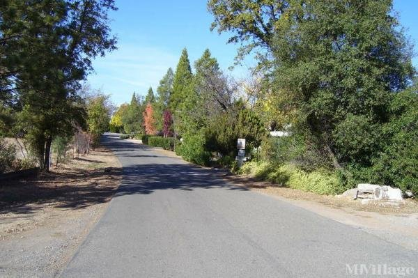Photo of Crestview Mobile Home Park, Placerville, CA