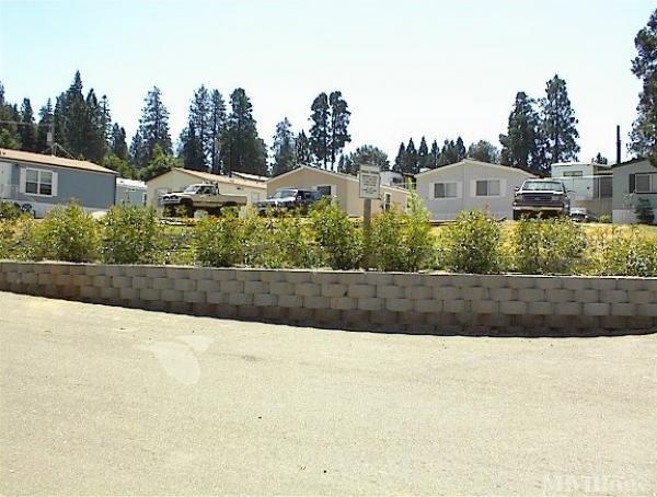 Photo of Village Family Park, Pollock Pines, CA