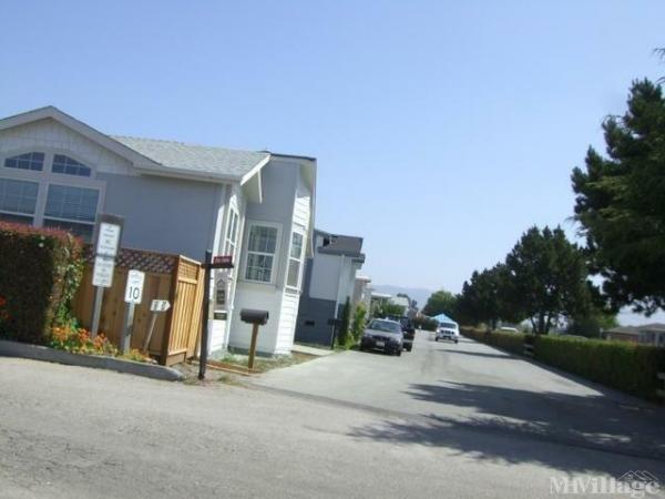 Photo of Meadows Manor, Watsonville, CA