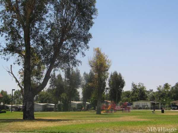 Photo of Meridian Terrace, San Bernardino, CA