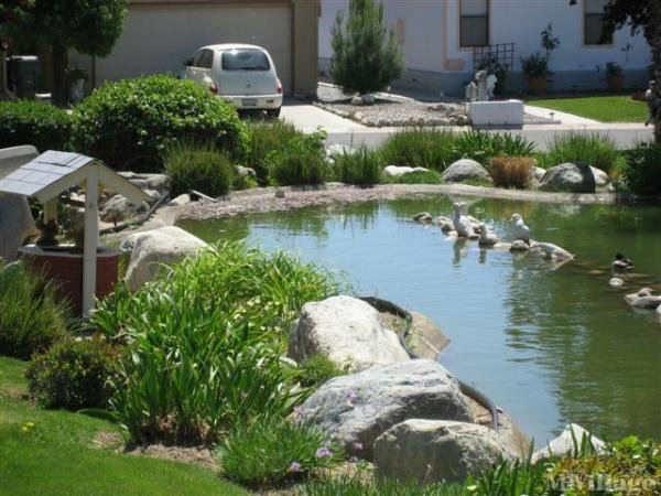 Photo of Mountain Springs Manufactured Home Community, Banning, CA