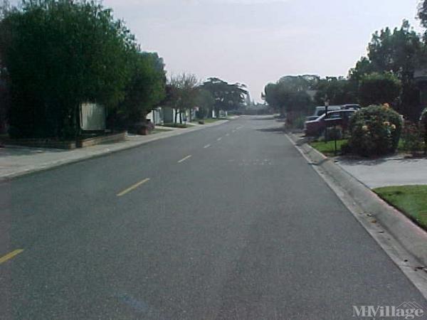Photo of Mountain View Estates, Upland, CA