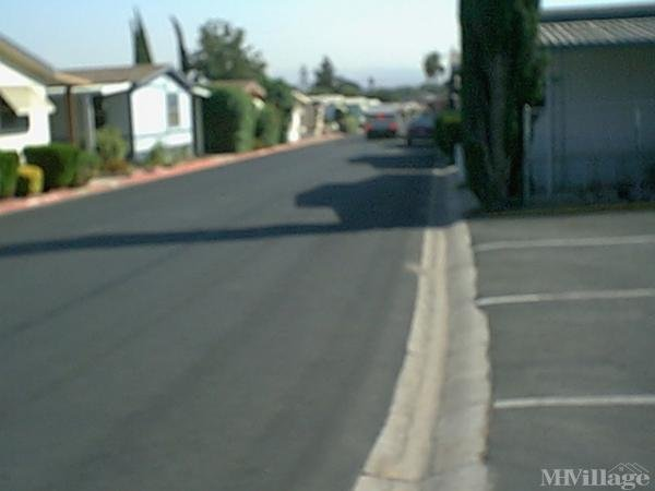 Photo of Pacific Palms Mobilehome Park, Highland, CA
