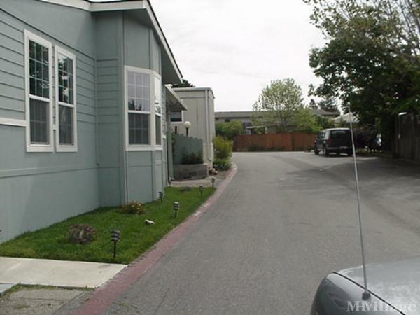Photo of Palm Terrace Estates, Aptos, CA
