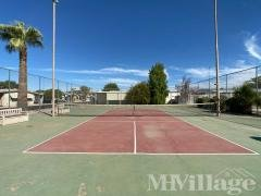 Photo 5 of 7 of park located at 6942 West Olive Avenue Peoria, AZ 85345