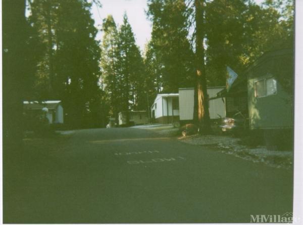 Photo of Pioneer Creek Mobile Home Community, Pioneer, CA