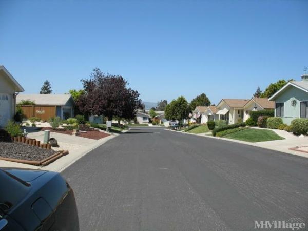 Photo of Quail Meadows East, Santa Maria, CA